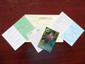 Karty wstępu, licencje, bilety, zezwolenia na spływy - Biebrza