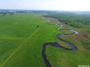 Tratwy - opis szlaku wodnego rzeką Biebrzą