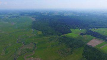 Rzeka Biebrza okiem drona