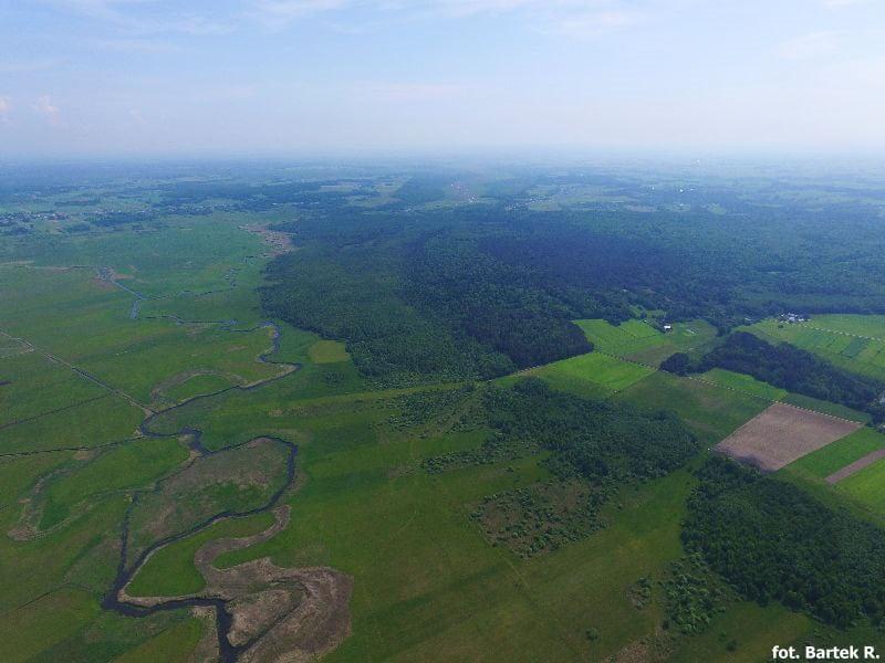 Rzeka Biebrza z lotu ptaka - drona