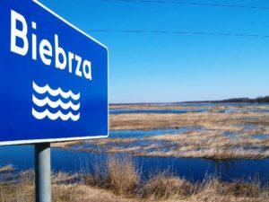 Rzeka Biebrza - Biebrzański Park Narodowy
