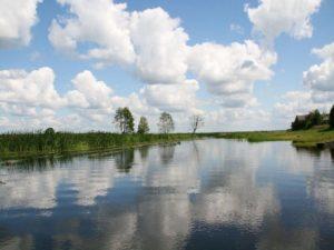 rzeka Biebrza
