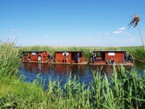 Spływy tratwami rzeką Biebrzą