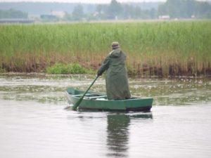 wędkarstwo biebrza wędkowanie i łowienie ryby w biebrzy